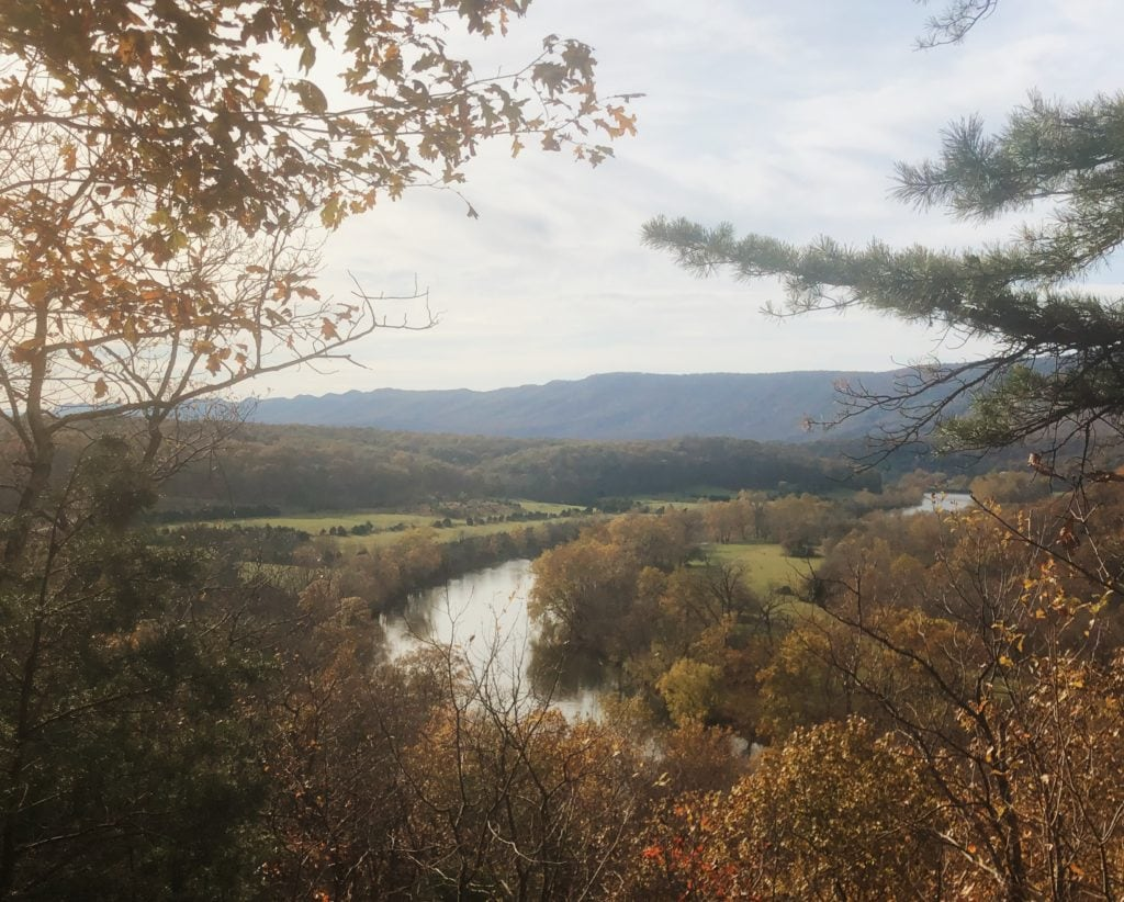 The Shenandoah River curves off to the horizon, flanked by autumn leaves